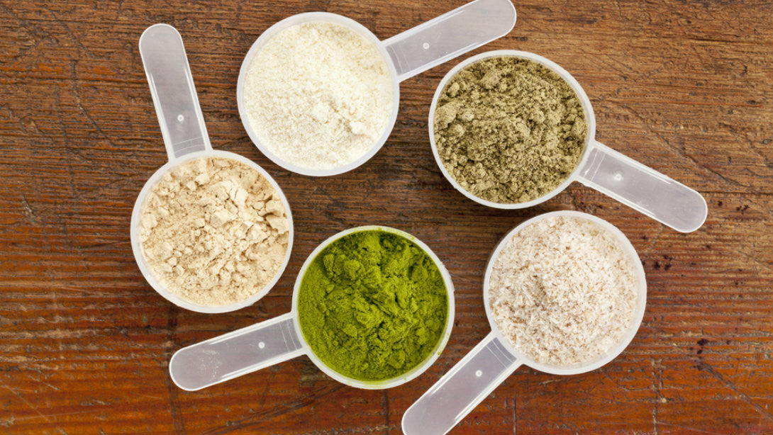THE WHO'S WHO OF PROTEIN