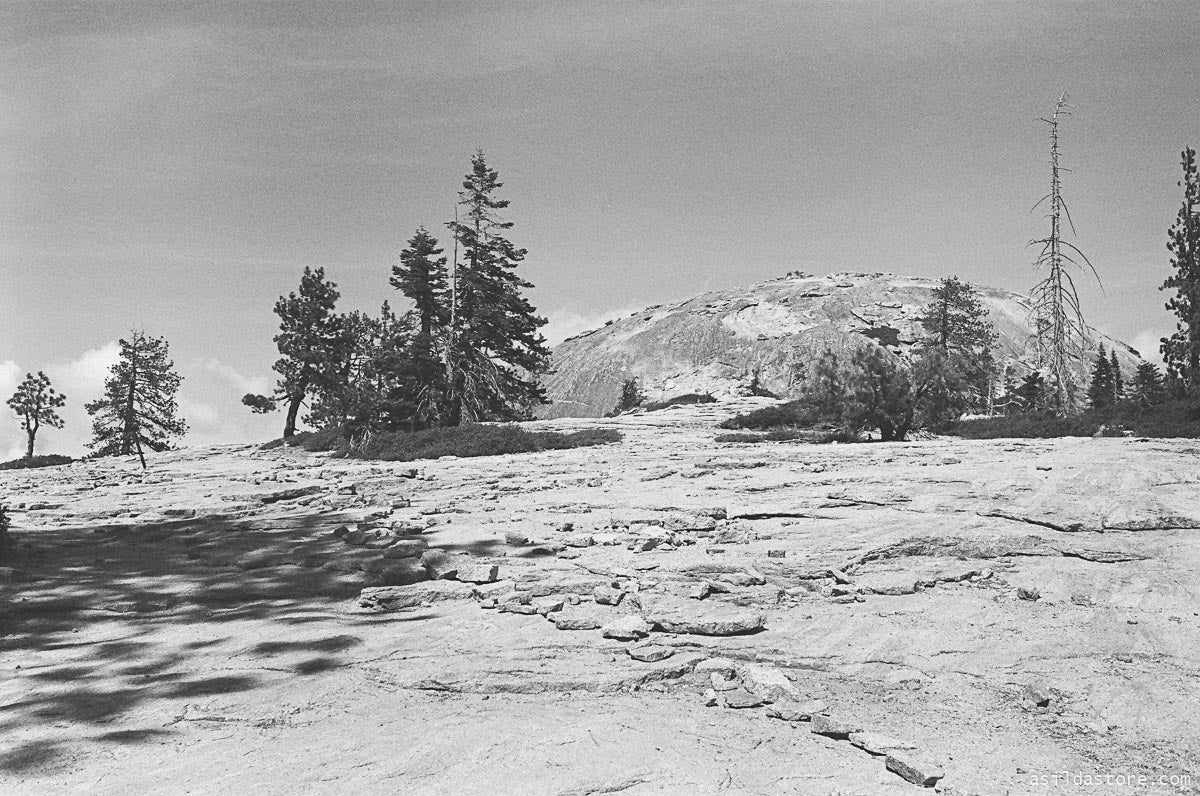 Yosemite Valley View. Shot on 35mm film HP5 and Leica M6