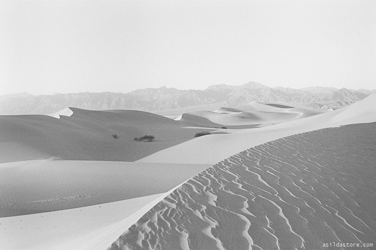 Mesquite Dunes in Death Valley. Shot on 35mm film HP5 and Leica M6
