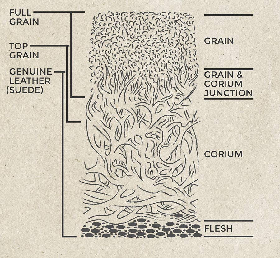 Merveilleux Profile Of An Animal Skin Showing Which Parts Are Used For Various Leather  Grades
