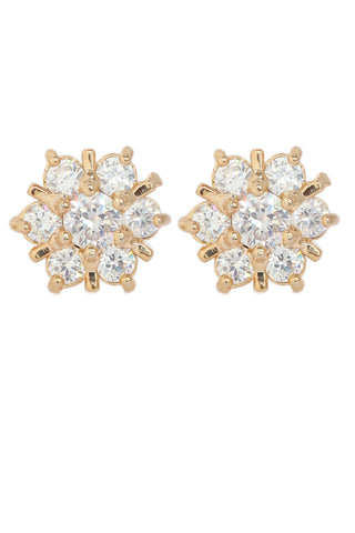 Touchstonead Stones Earring- BBETGE73-01A--Y