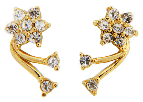 Austrian Diamond Earrings By Touchstone- FGETA036-01A--Y