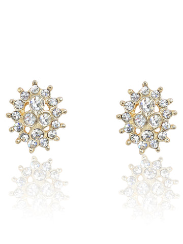 Austrian Diamond Earrings By Touchstone - FGETL197-01A--Y