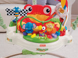 Fisher-Price Rainforest Jumperoo - Baby Brands 4 U - 3