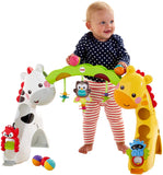 Fisher-Price Newborn-to-Toddler Play Gym - Baby Brands 4 U - 4