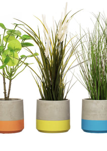 Colour Blocked Cement Planters Large - 3 Colours