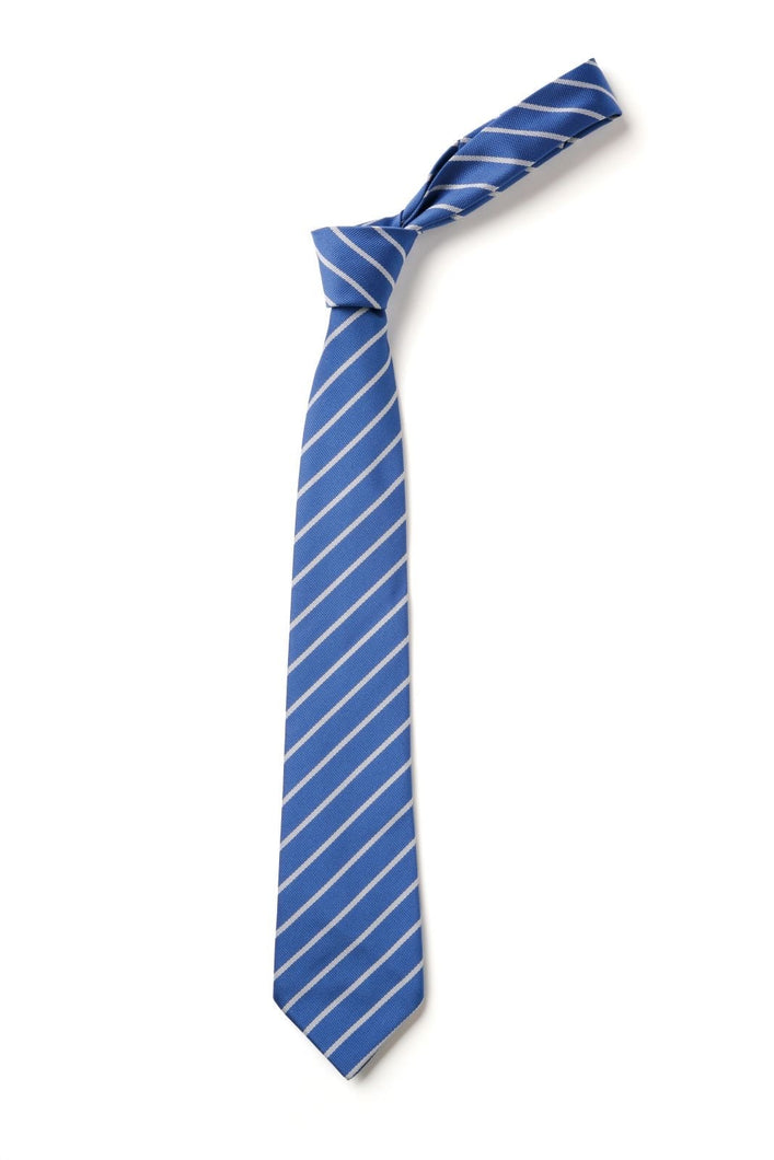 Rosemellin School Ties