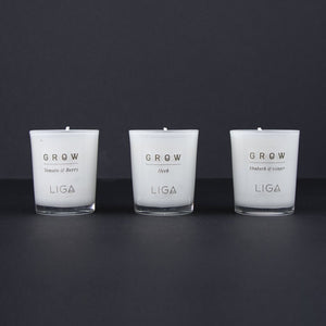 Liga of Cornwall Grow Trio of Candles