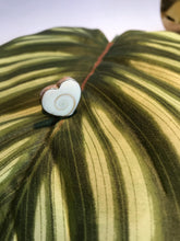 Sands Silver Stone Heart Ring - Sands Boutique clothing and gifts