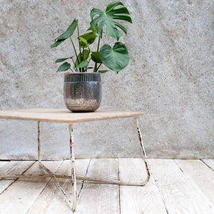 Dassie Artisan Ula Coffee Table