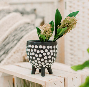 Sass and Belle Spotty Leggy Planter - Sands Boutique clothing and gifts