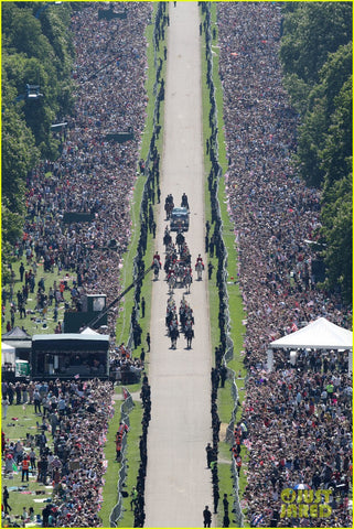 Royal Wedding; Aerial Viiew