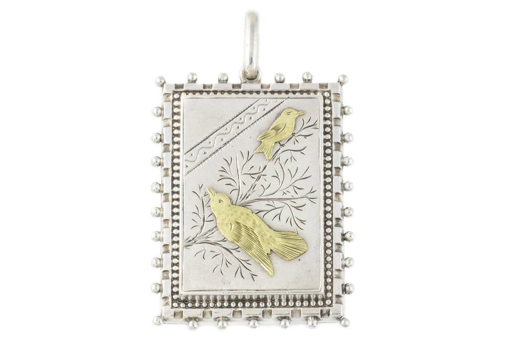 Victorian Aesthetic Silver Locket with Gold Birds