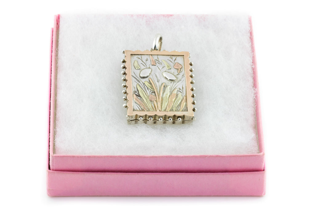 Victorian Aesthetic Gold & Silver Rectangular Locket
