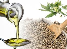 The Benefits of Hemp Seed Oil
