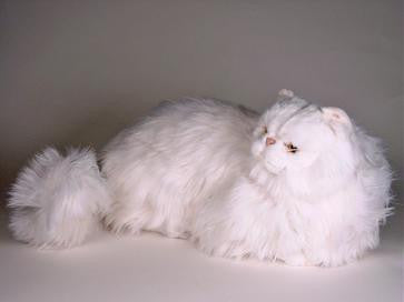 """Seraphita"" White Persian"