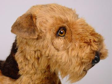 """Arlen"" Welsh Terrier"