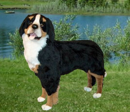"""Kenai"" Bernese Mountain Dog"