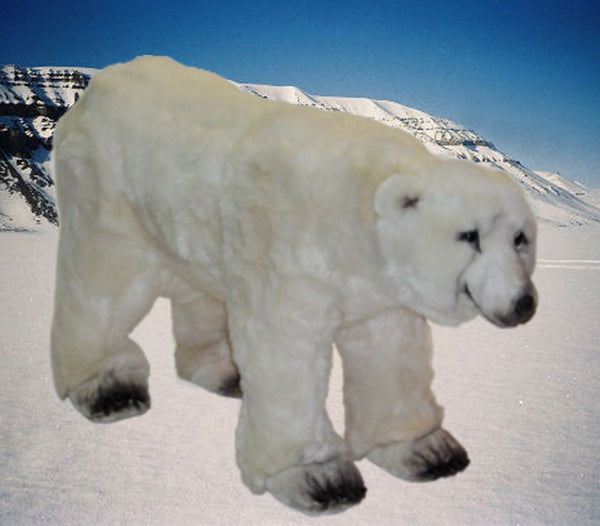 """Luk"" Polar Bear"