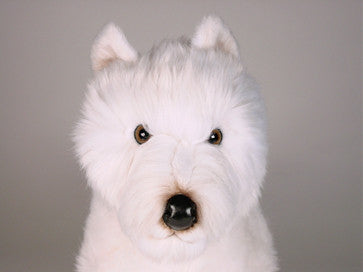 """Piper"" West Highland Terrier"