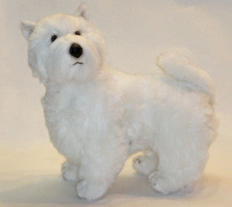 """J.C."" West Highland Terrier"