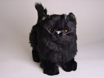 """Orion"" Black Persian"