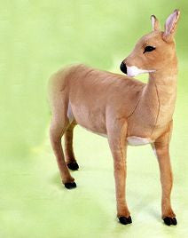 """Lillith"" Deer Doe"