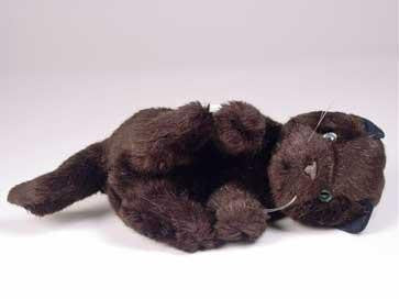 """Bombay"" Black Cat"