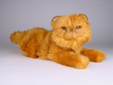 """Jazzie"" Red Persian"
