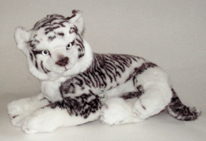 """Mirage"" White Siberian Tiger"