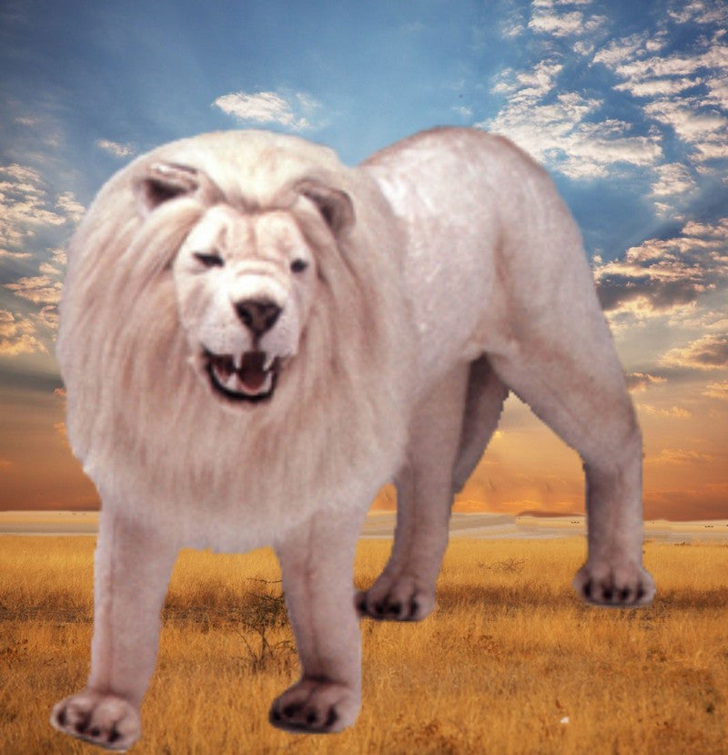 """Kimba"" White Lion"