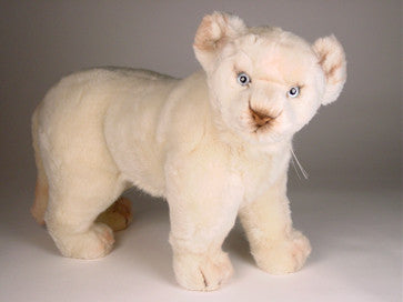 """Chloe"" White Lion Cub"