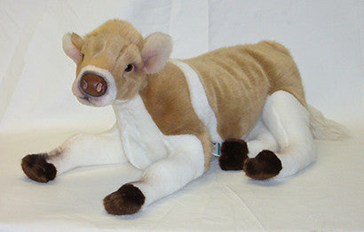 """Flossie"" Cow"