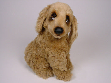 """Feller"" Cocker Spaniel"