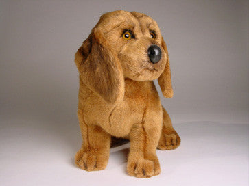 """Copper"" Bloodhound"