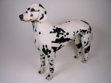 """Clydesdale"" Dalmatian"