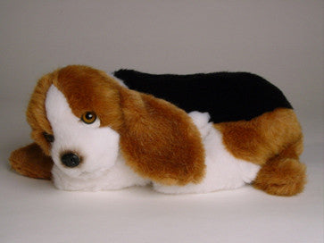 """Flash"" Basset Hound"