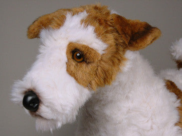 """Bailey"" Wire Fox Terrier"
