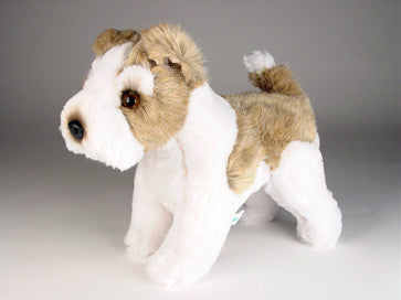 """Willie"" Wire Fox Terrier"