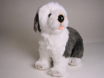 """Martha"" Old English Sheepdog"