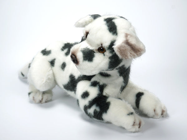 """Brentley"" Great Dane Harlequin"