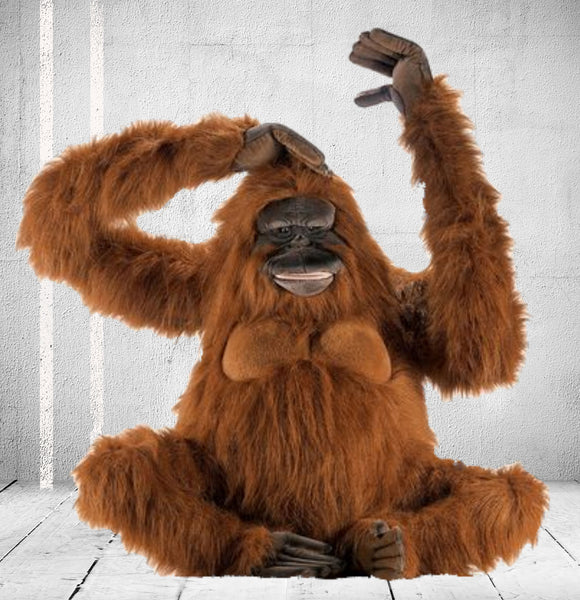 """King Louie"" Orangutan"