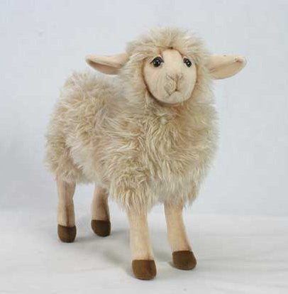 """Tulip"" Sheep"