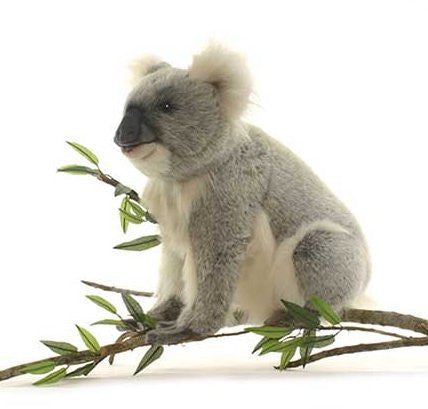 Boomer Koala Bear Luxury Plush Stuffed Bear Big Furry Friends
