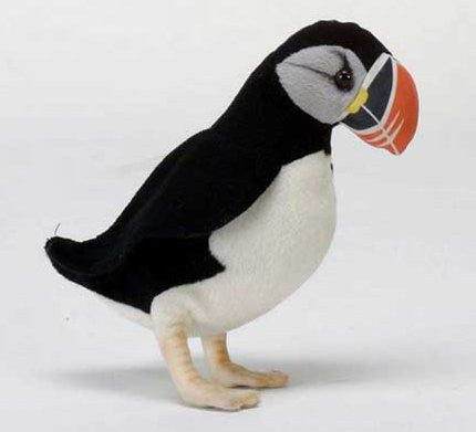 """Perry"" Puffin"