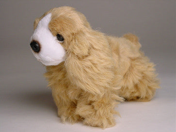 """Flush"" Cocker Spaniel"
