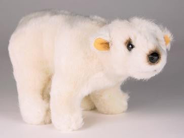 """Buster"" Polar Bear"