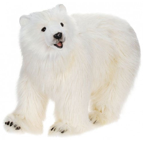 """Charly"" Polar Bear"