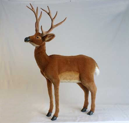 """Roebuck"" White Tail Deer"