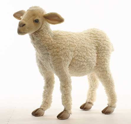 """Charm"" Sheep Lamb"